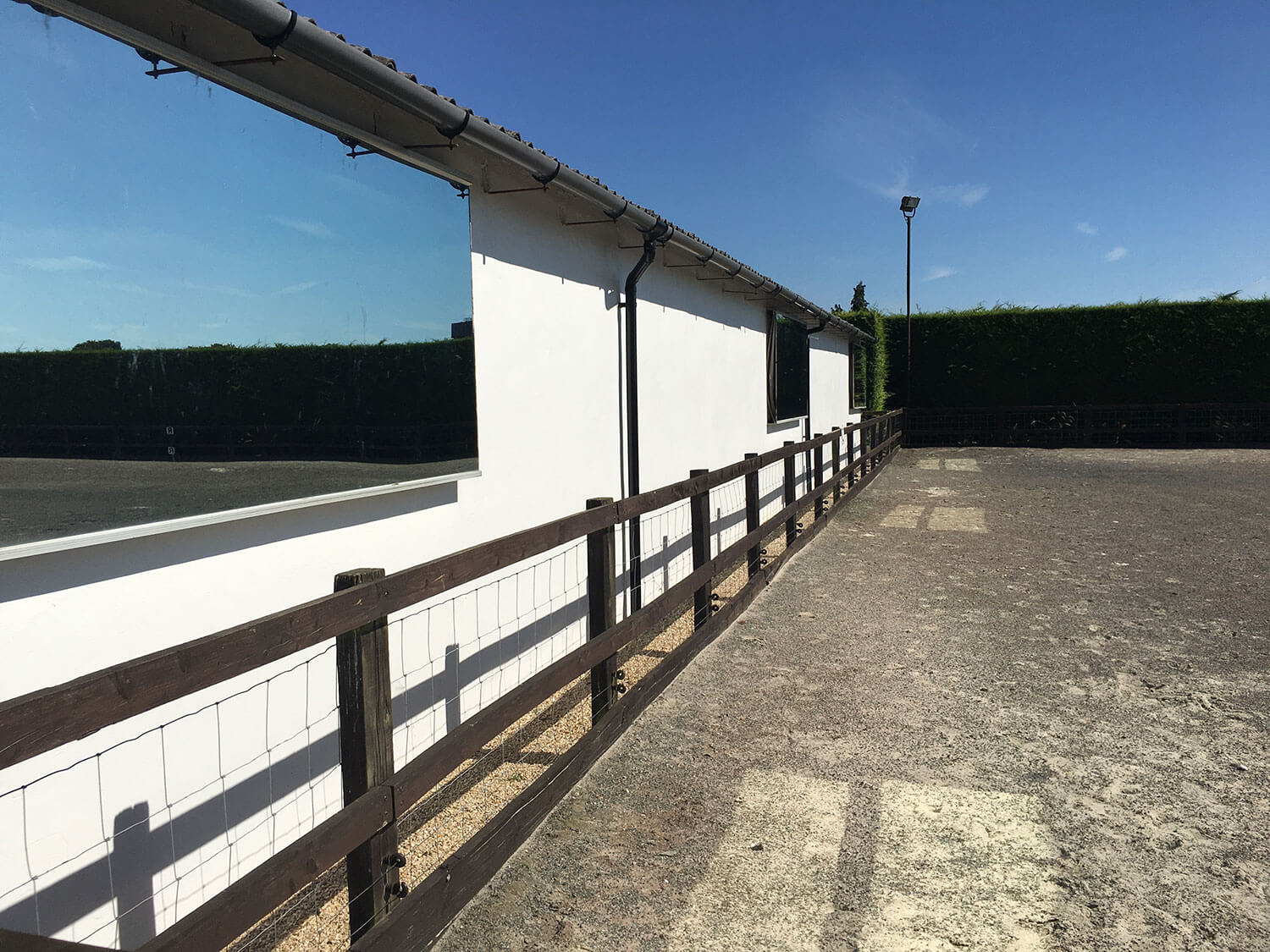 Mirrors for dressage